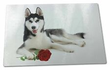 Siberian Husky with Red Rose Extra Large Toughened Glass Cutting, C, AD-H55RGCBL