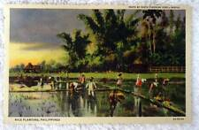 LINEN POSTCARD RICE PLANTING IN THE PHILIPPINES #D2