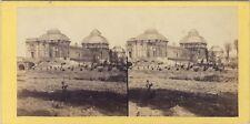 Bordeaux Serre du Jardin Botanique Photo Stereo Vintage albumine ca 1860