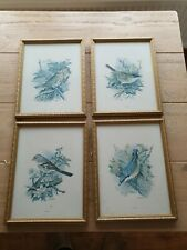 Art Deco Vintage Prints Of Animal Robin nuthatch  Gold Framed Signed Vortigen x4