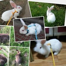 Rabbit Soft Harness Leash Adjustable Pets Bunny Nylon Vest For Running Walking