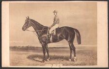 Hippisme. Cheval de course - Happy Day. Photographe Goupil. Vers 1870. CDV