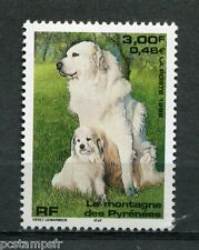 FRANCE 1999, timbre 3285, CHIEN MONTAGNE PYRENEES, neuf**, DOG, VF MNH STAMP