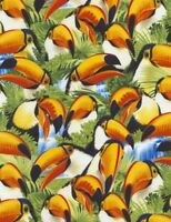 Tropical Fabric - Toucan Bird Selfies Packed - Timeless Treasures YARD