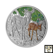 2015 White-Tailed Deer-Baby Animals Colorized Proof $20 Silver .9999 1oz (17410)