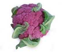 1000mg Sicillian Violet Cauliflower ~400 Seeds ~ Purple Heirloom Brassica Veggie