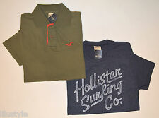 NWT HOLLISTER Men's Lot of 2 Tshirt + Polo, L, Large, Blue& Green, 100% Cotton