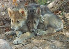 Carl Brenders BROTHERLY LOVE, Wolf pups, giclee canvas, ARTIST PROOF A/P #4/40