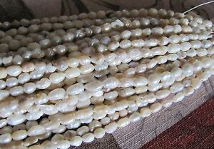 (1) strand of Fresh Water Pearls 20 inches