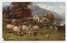 Happy ENGLAND. Pleasant Pastures . Moutons. Sheep. OILETTE