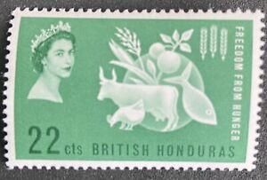 BRITISH HONDURAS. 1963 - QE II - FREEDOM FROM HUNGER - MINT - MNH SINGLE