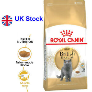 Royal Canin British Shorthair Adult  Balanced Protein content and L-Carnitine
