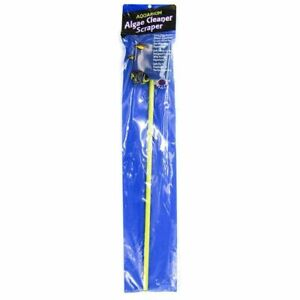 LM-Blue Ribbon Double Sided Algae Pad On Stick