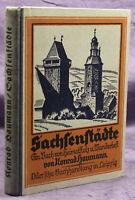 Haumann Sachsenstädte 1925 Geschichte Landeskunde Heimatkunde Wanderlust sf