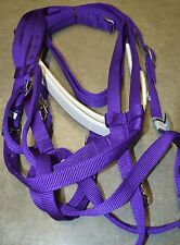 Race Racing Bridle Set Purple TB AQHA Quarter Horse Jockey Reins Headstall Tack