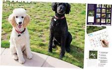 2021 Poodles Wall Calendar by Bright Day, 12 x 12 Inch, Cute Dog Puppy
