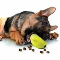 Nerf Dog Feeder Large Rubber Treat Dispensing Toy