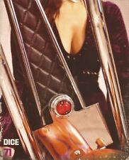 DicE magazine #71 magazine harley shovelhead panhead knucklehead chopper Triumph