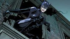 Catwoman Comics DC Selina Kyle Silk Poster Wallpaper 24 X 14 inch