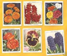Incomplete Sets Flowers/Garden Collectable Will's Cigarette Cards