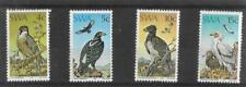 1975    SOUTH WEST AFRICA  -  SG.  270 / 273  -  PROTECTED BIRDS  -    UMM