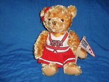 """HIGH SCHOOL MUSICAL The Ice Tour Cheerleader Bear Plush & Beans 13"""""""