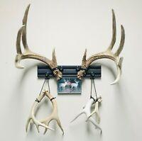 """Details about  /Huge 87-88"""" Mule Deer Shed Antlers Horns Elk Moose Rack"""