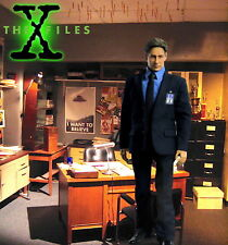 "1/6 X-Files Fox Mulder Office 15""x15"" Diorama IKEA Detolf - Sideshow ThreeZero"