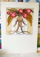 VIVIANI VANNI litografia + cornice surrealismo autoritratto quadro grecoarte