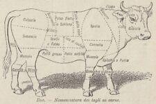 C2909 Bue - Nomenclatura dei tagli di carne - Stampa d'epoca - 1936 old print