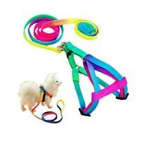 Colorful Nylon Pet Dog Harness&Leash Set for Small Puppy Breeds Yorkie Labrado