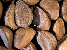 Fresh Raw In-shell Whole Brazil Nuts