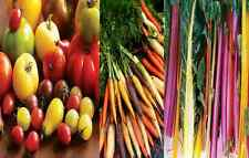MIXED RAINBOW VEGETABLE SEEDS HEIRLOOM TOMATO BEET CARROT BULK SEED MIX COLOUR