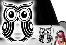 1x EULE UHU 13x10cm Auto Aufkleber HAWAII Tattoo Gekko HIBISKUS  Eidechse gecko