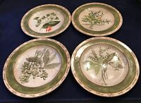 "American Atelier BOUQUET GARNI 5011 8 1/4"" Salad Plates Indonesia Lot of 4 EUC"