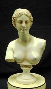 Bust Of Venus