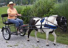 Mini / Pony Easy Entry Cart - In Cincinnati Ohio