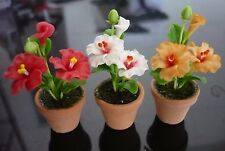 Set of 3 Hibiscus Flower Plant in Terracotta Pot Dollhouse Miniatures Garden