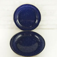 """Set of 2 Enamel Blue Speckled Dinner Plates 10"""" Camping RV Dishes"""