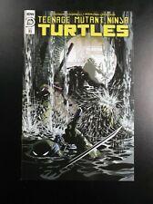 Teenage Mutant Ninja Turtles #110 1:10 Variant R1