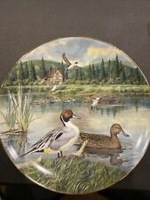 Vintage Collectors Plate 1986 The Pintail Edwin M Knowles