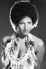 Pam Grier photo  low cut afro hairstyle iconic 1970's 11x17 Mini Poster