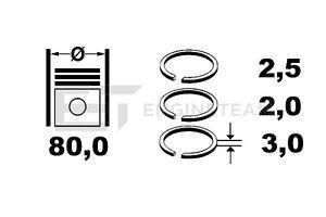R1004300 Jeu de Segments Renault Clio Kangoo Laguna Megane 1,9 Dti DCI F9Q