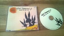 CD Indie Albert Hammond Jr. - back to the 101 (1) canzone PROMO Sanctuary SC