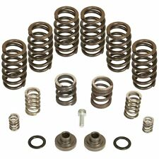 BD Diesel Governor Spring Kit 4000rpm For 94-98 Dodge 12v Cummins P7100 Pump