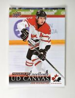 2018-19 UD Upper Deck Series 2 Canvas Program of Excellence #C269 Joe Hicketts