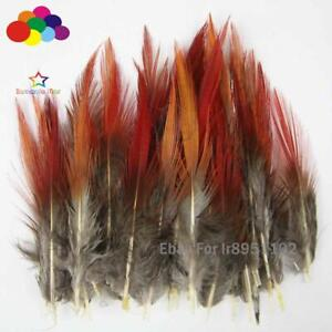 Pretty Pheasant red tip Feathers 10-100pcs Natural 5-30cm / 2-12inches For mask