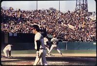 Richie Hebner 35mm Baseball Slide I7 1971 World Series Merv Rettenmund