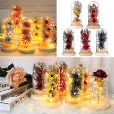 Large Dried Flowers Glass Dome Cloche Jar Mothers Day Xmas Gift with Led Light