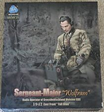 did action figure german wolfram  1/6 12'' boxed hot toy ww11 dragon
